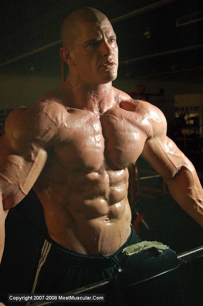 Remarkable, the bodybuilder sarah de herdt