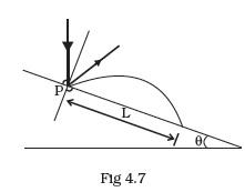 projectile motion class 11 pdf