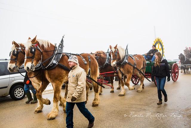 20141213-HolsteinChristmasParade-WM-7