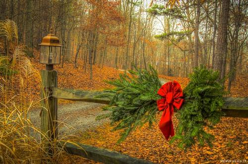 christmas photoshop nikon unitedstates northcarolina wreath shelby hdr lightroom clevelandcounty christmaswreath mosslake photomatix shelbync spakes