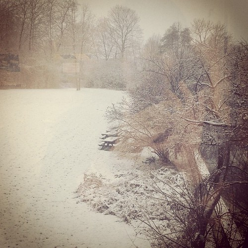 First snowfall from my office window. #snow #Canada #ottawa #hibernationnotification