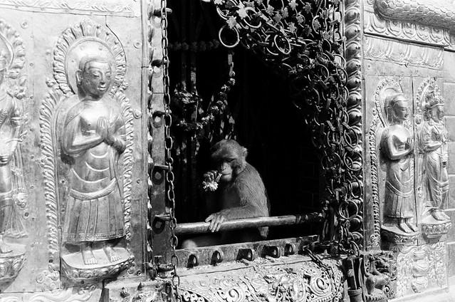 010.Swayambhunath