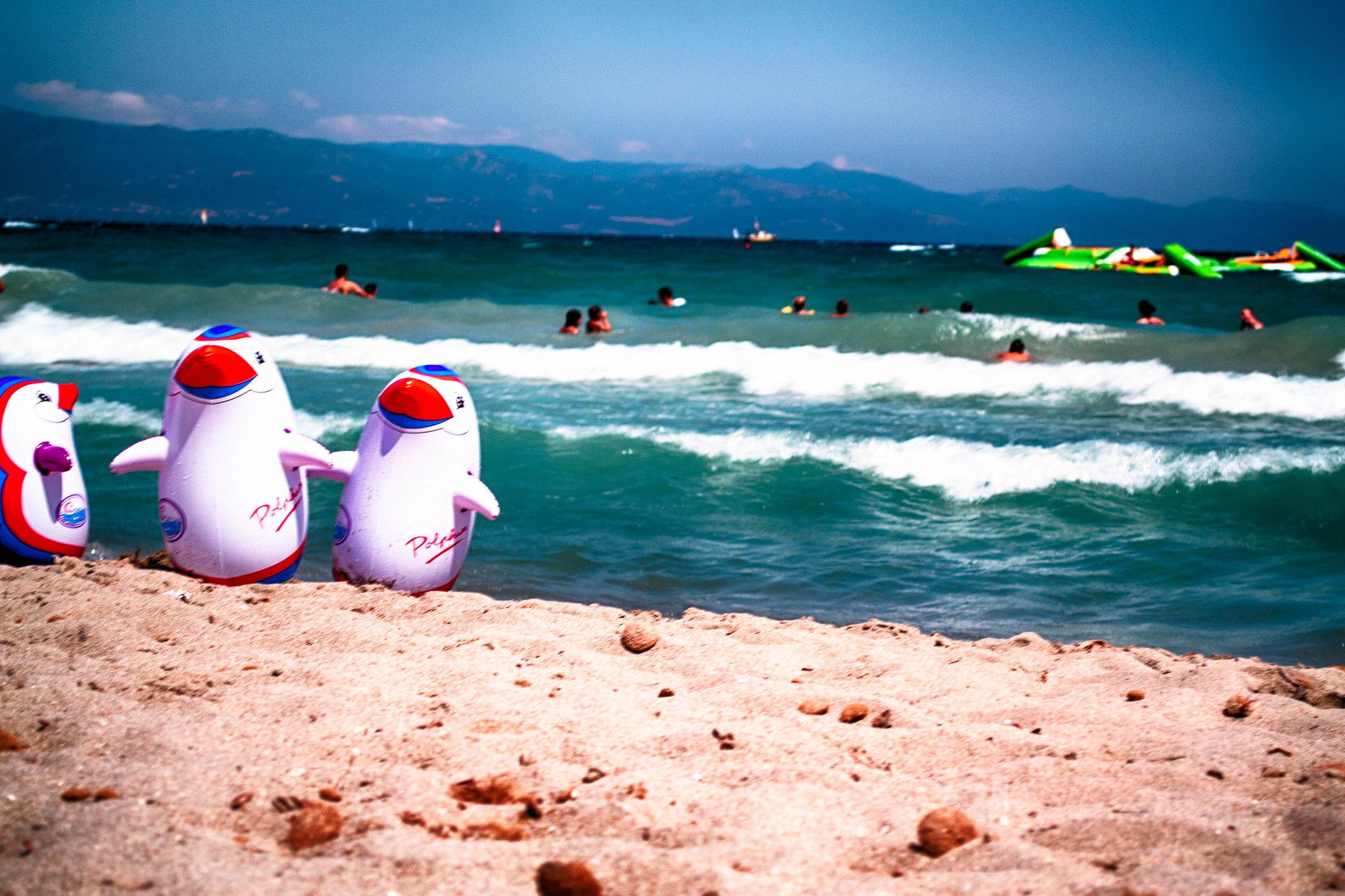 Cagliari Penguins