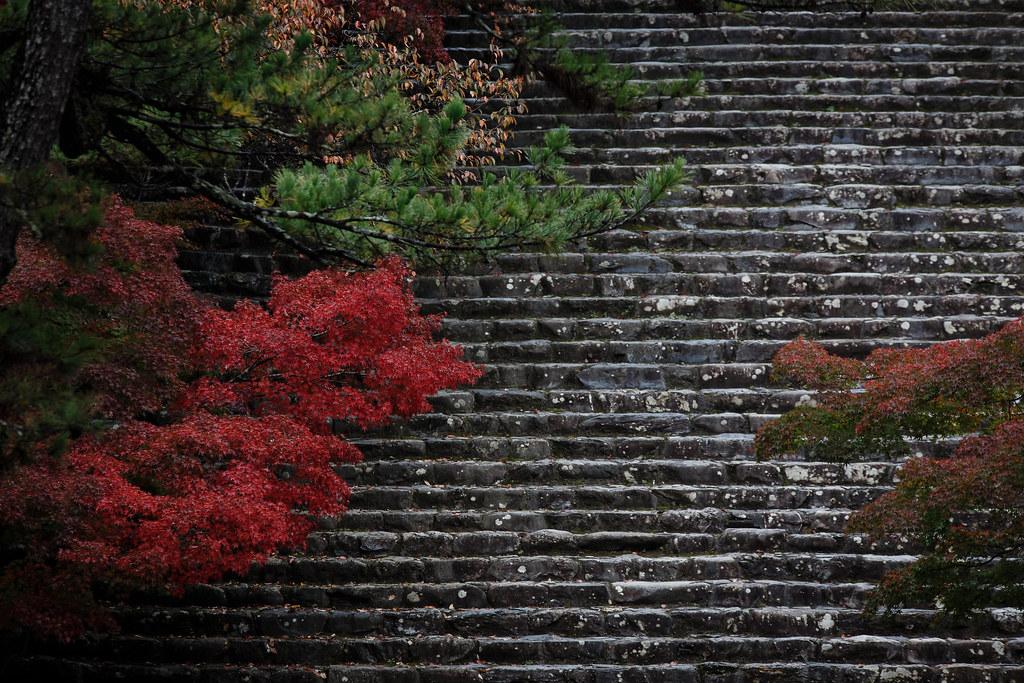 絶景の階段