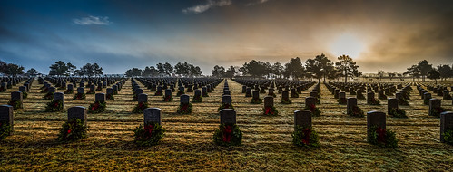 christmas panorama cemetery grave graveyard america sunrise memorial texas unitedstates military headstone houston honor wreath gravestone vista service remembrance veteran wreaths gravesite tiltshift houstonnationalcemetery wreathsacrossamerica canontse24mmf35lii