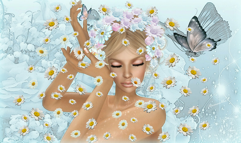 it rains daisys
