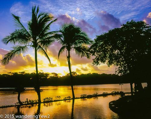 reflection 120 mamiya film sunrise mediumformat geotagged costarica swimmingpool tortuguero filmscan mamiya7ii tortugalodgeandgardens wildernesstraveltour geo:lat=10571311192142993 geo:lon=8351917147636414