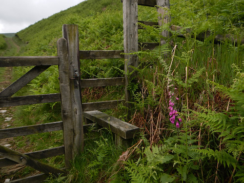 Fence on the walk just past the Ladybower Reservoir