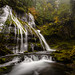 Panther Creek Falls by mlhell