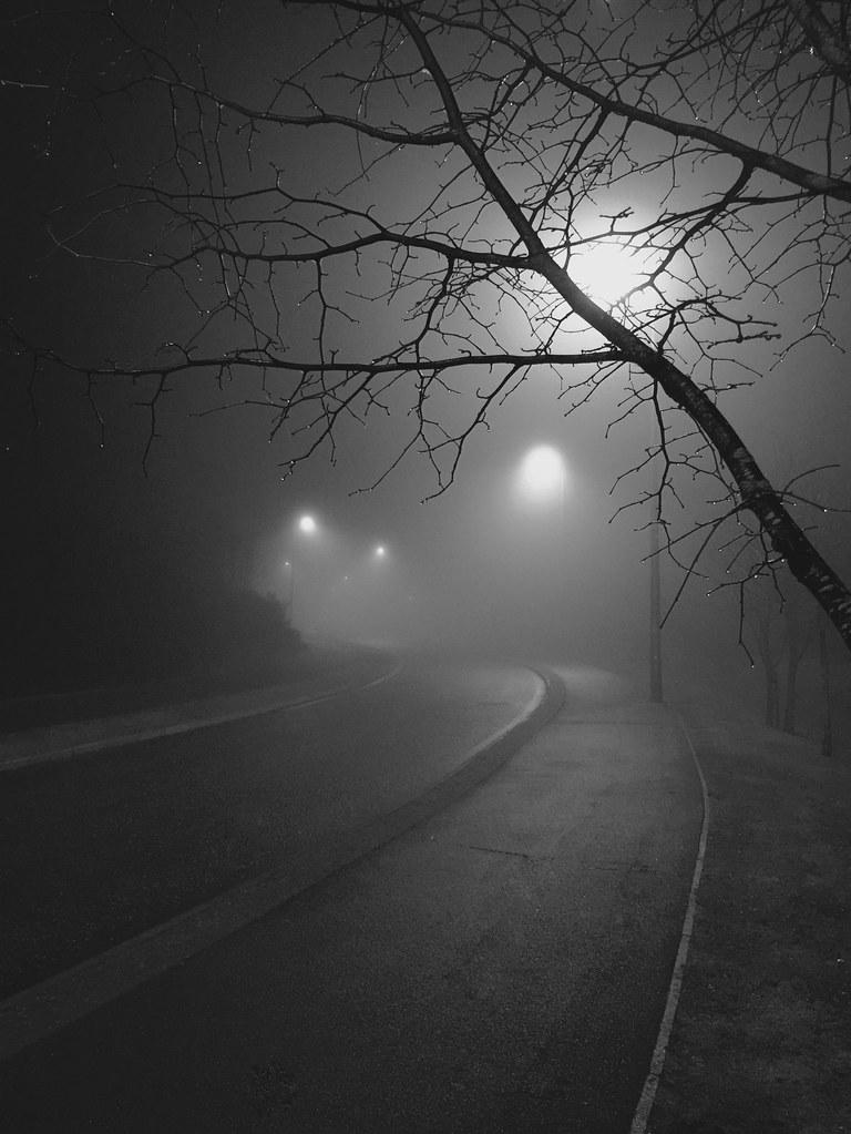 Foggy Foggy Night