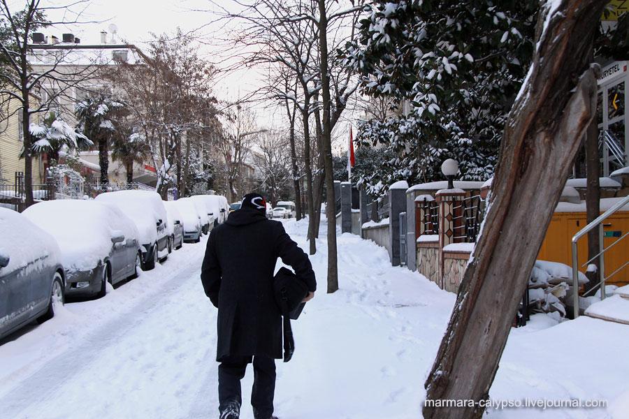 Snow-2012