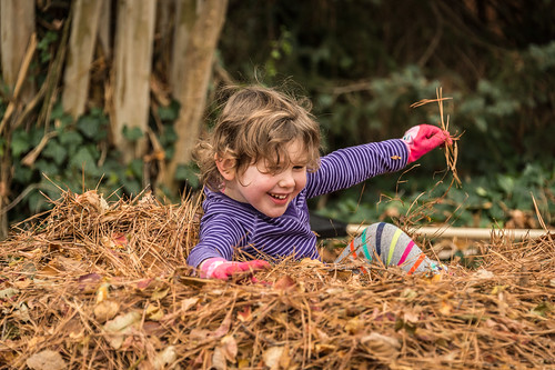 Playing in the Leaves by Geoff Livingston