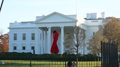 Commemorative Red Ribbon White House 2014 World AIDS Day 50187