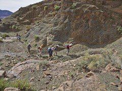 trail, adventure, soil, mountain, walking, backpacking, geology, plateau, terrain, wilderness, wadi, hiking, mountainous landforms,