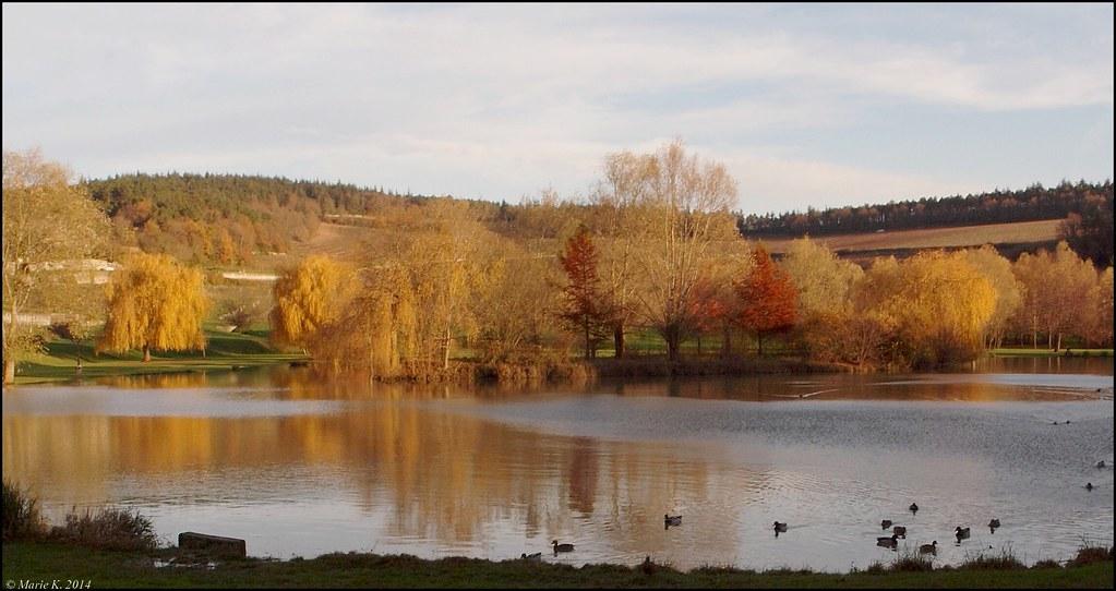 Au petite lac, des arbres, des couleurs. 15737012328_bd37bbf58b_b