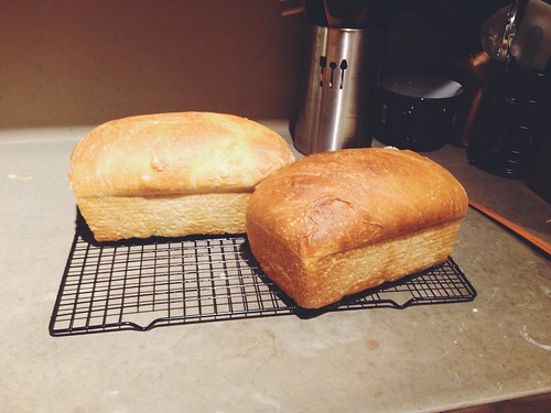 Amish Sourdough Bread