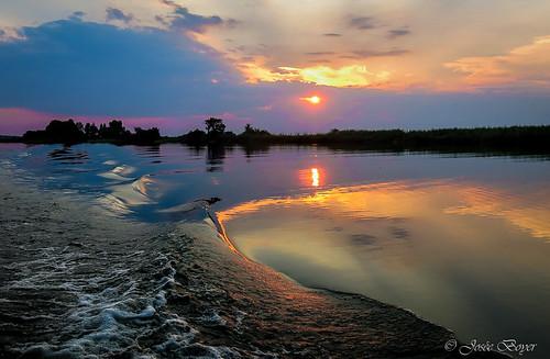 river rivière botswana chobe namibie