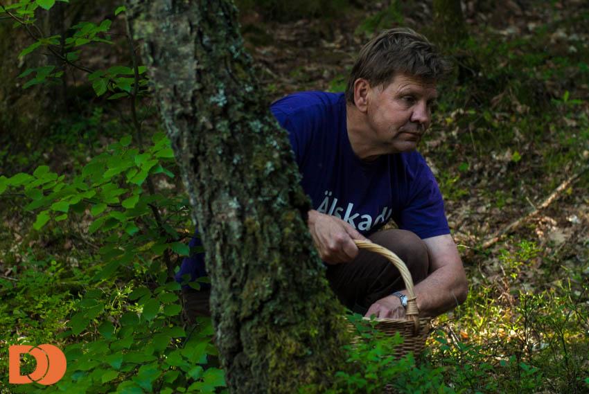 Pappa i svampskogen
