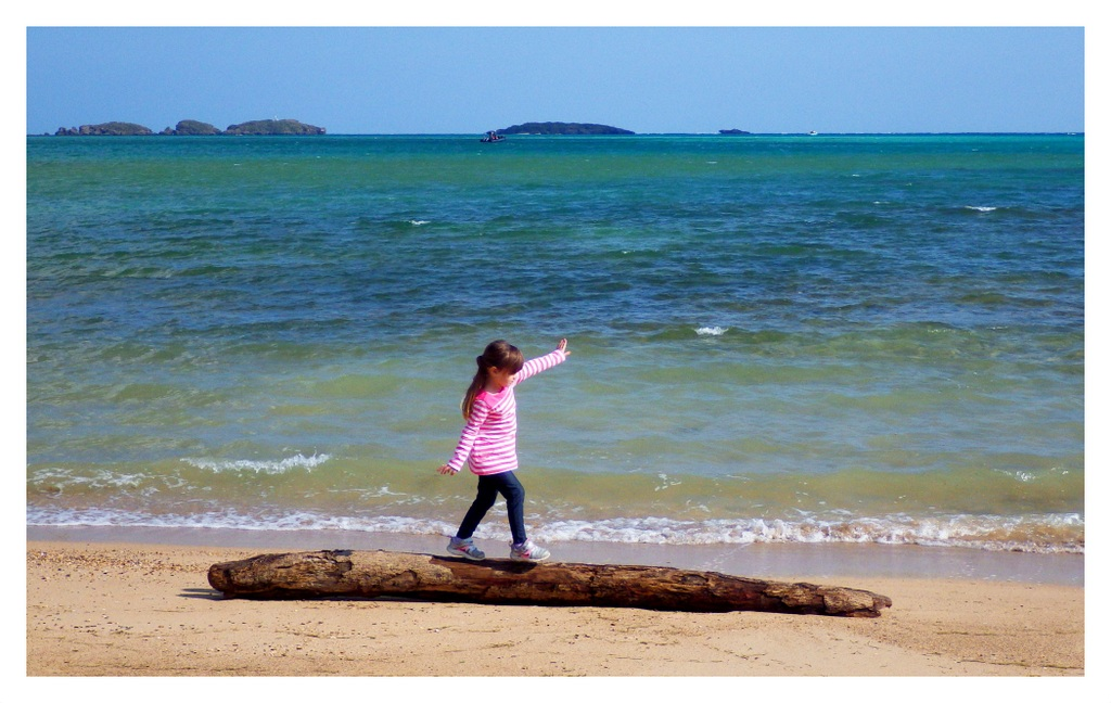 PLAYING ON DRIFTWOOD