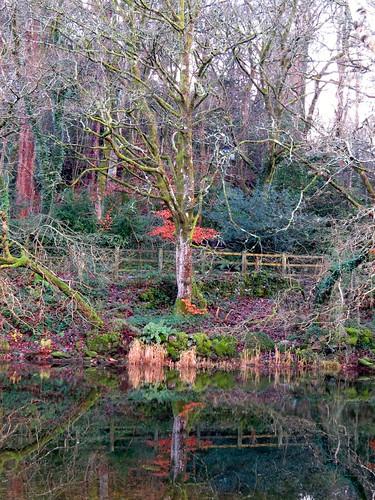 732 Llyn Padarn reflections