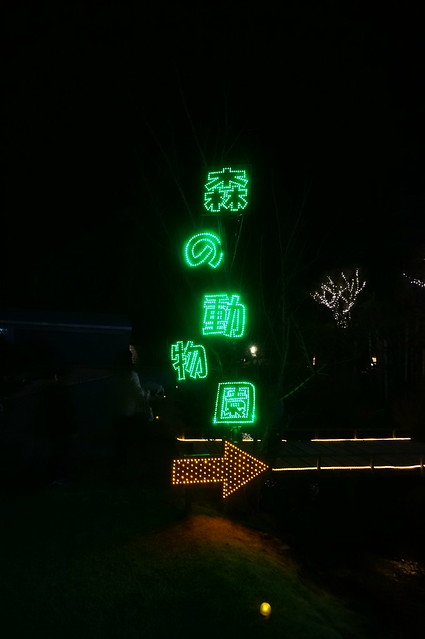 Night forest zoo Flower Fantasy 2015 illumination at Ashikaga Flower Park 07