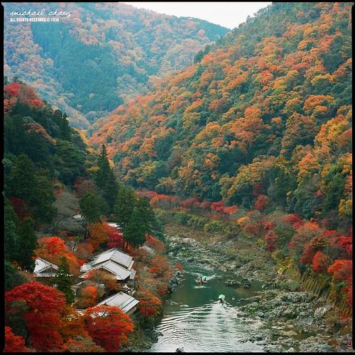 120 6x6 japan mediumformat square t kyoto kodak hasselblad arashiyama manual 嵐山 cf 500cm sonnar carlzeiss portra400 1504 桂川