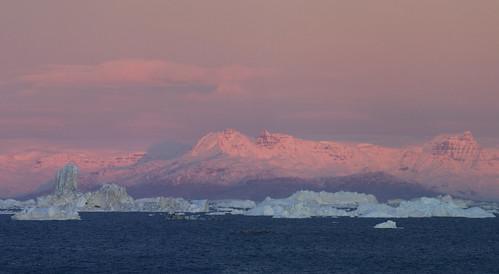 arctic greenland icebergs mcmanus ilulissat diskobay westgreenland ilulissaticefjord