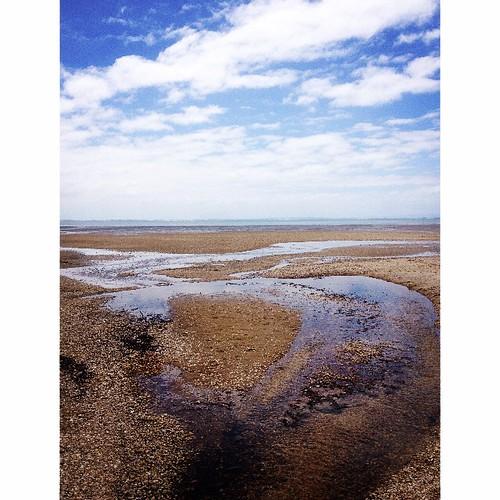 Awhitu Beach