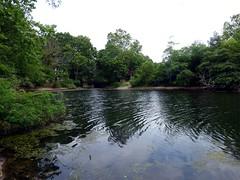Forest City Community Park (3)