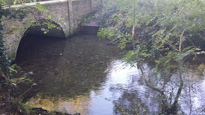 River Cray #LondonLOOP #sh
