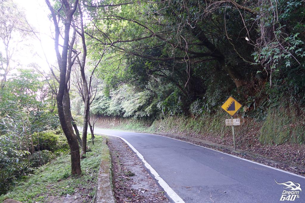 竹子湖青楓步道13