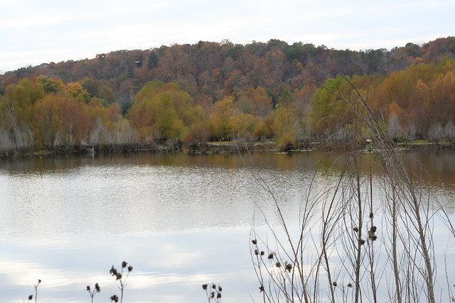 James River State Park Fall 2014 (158)