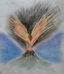 pastel phoenix