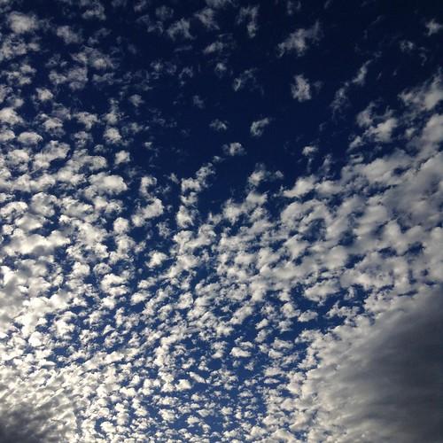 Popcorn clouds ☁️