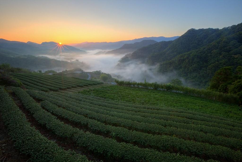 2014年Flickr上最熱門的10張相片:台灣篇