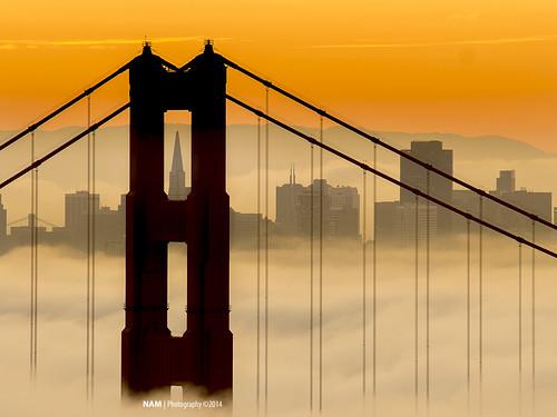 sanfrancisco fog sunrise lowfog karlthefog