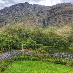 One of the most beautiful places on earth - trust me! Postcard Cafe, Starke Conde Wines, Jonkershoek, Stellenbosch