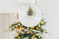 Christmas Tree | Glass Ball