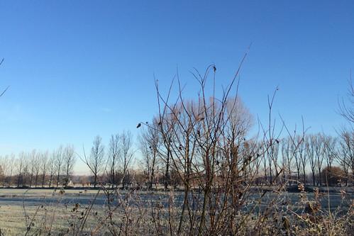 winter2014_2