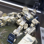 GBWC2014_World_representative_exhibitions-222