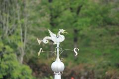 Le dragon d'Eole... (Chaudes-Aigues France).