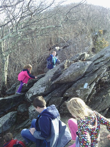 Dec 27 2014 Shenandoah National Park Bear Fence Hike (12)