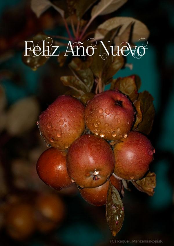 Feliz Año Nuevo. ManzanasRojasR