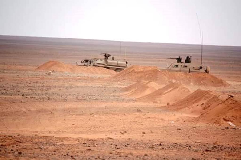 الصناعة العسكرية الجزائرية عربات ( النمر )  27882632065_82e2c3bf1d_o