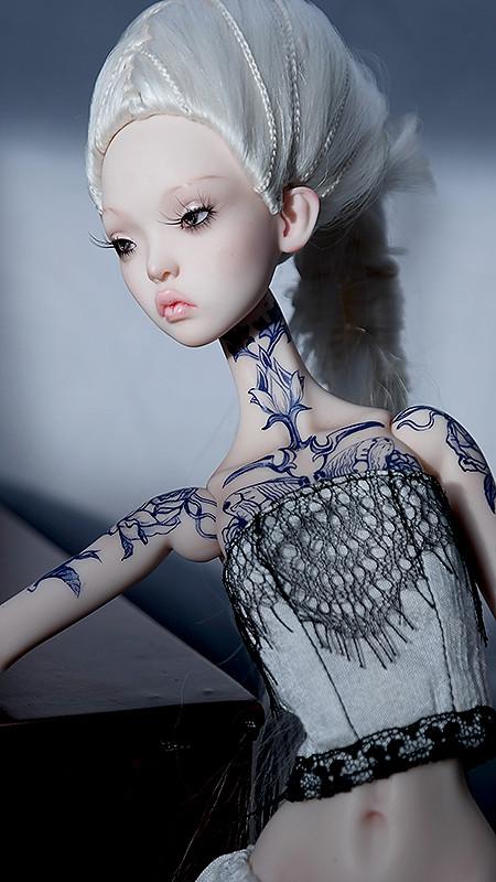 Finally, here she is, my dream Little Owl! 15566440933_dbdb62c952_b