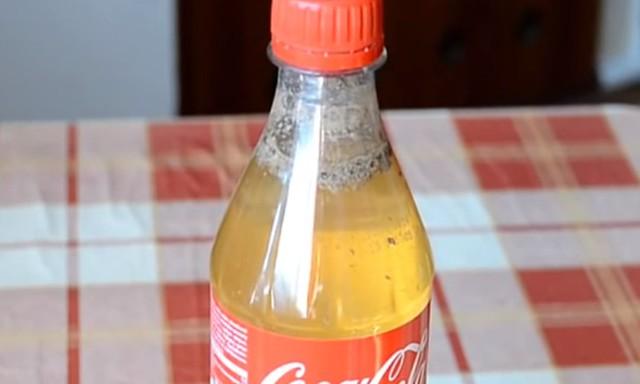 cola5