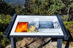 Kings Canyon & Sequoia - 149