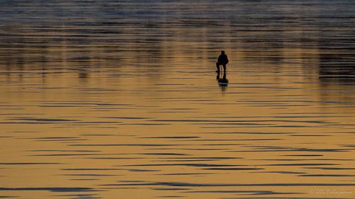 sunset espoo finland twilight fishing fi icefishing koti auringonlasku uusimaa parveke kalastus parvekekuva pilkkijä