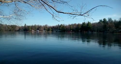 trees usa lake ny newyork ice nature water us unitedstatesofamerica ngc rockhill majkakmecova motorolaxt1023