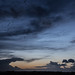pinkfeet at dusk by alunwilliams155